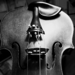 the_fiddle