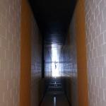 the_hallway